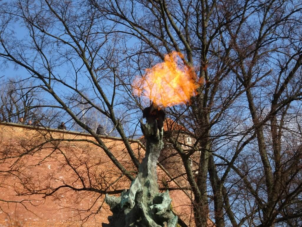 Krakow Dragon