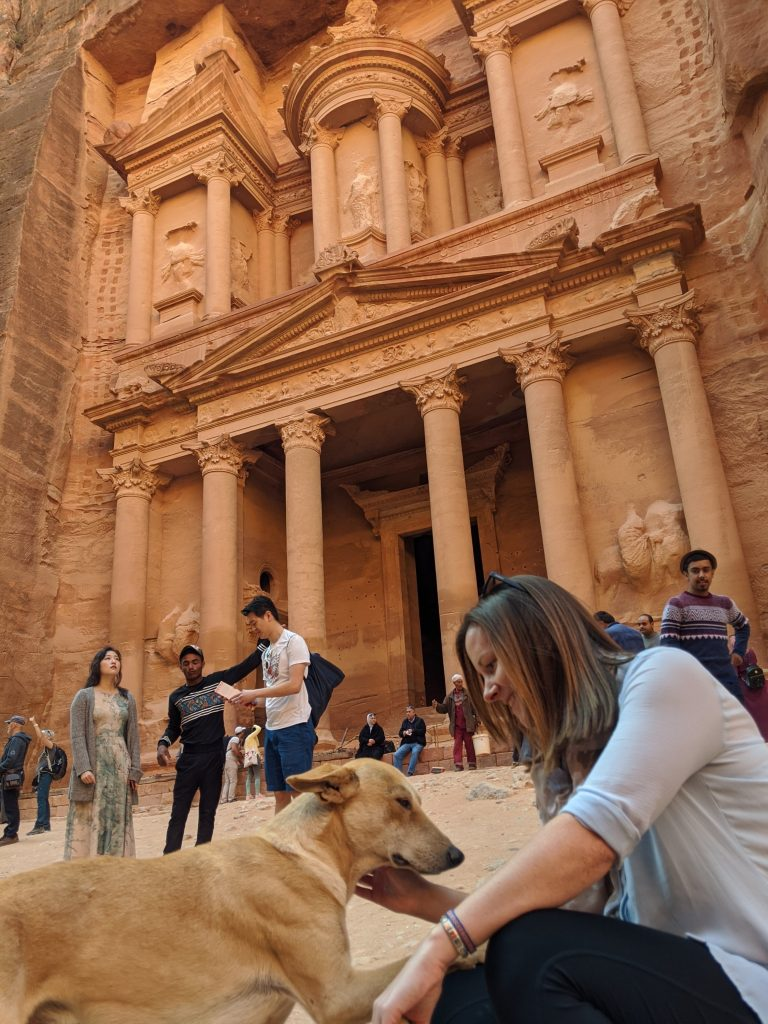 Dogs at Petra lost city