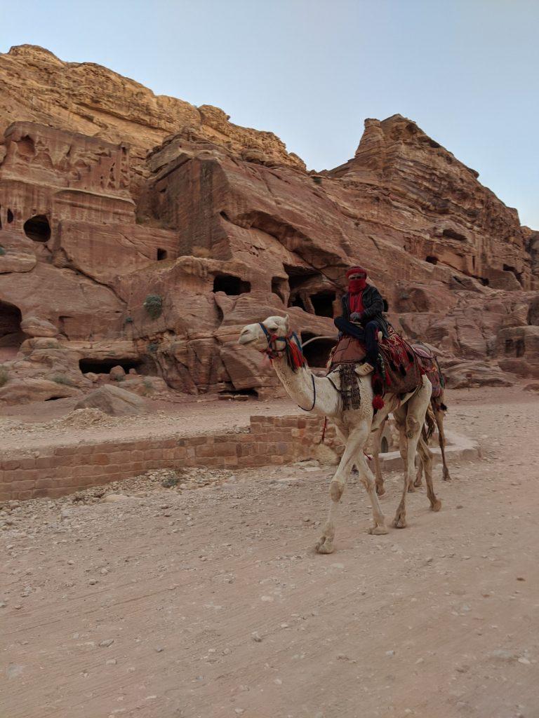 Petra tips 2020